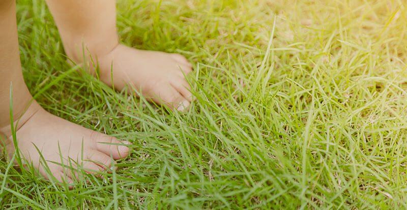 Dječje bose noge u travi